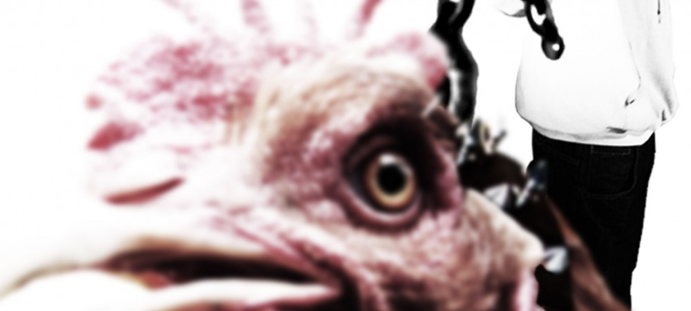 et-si-les-poules-avaient-des-dents-web